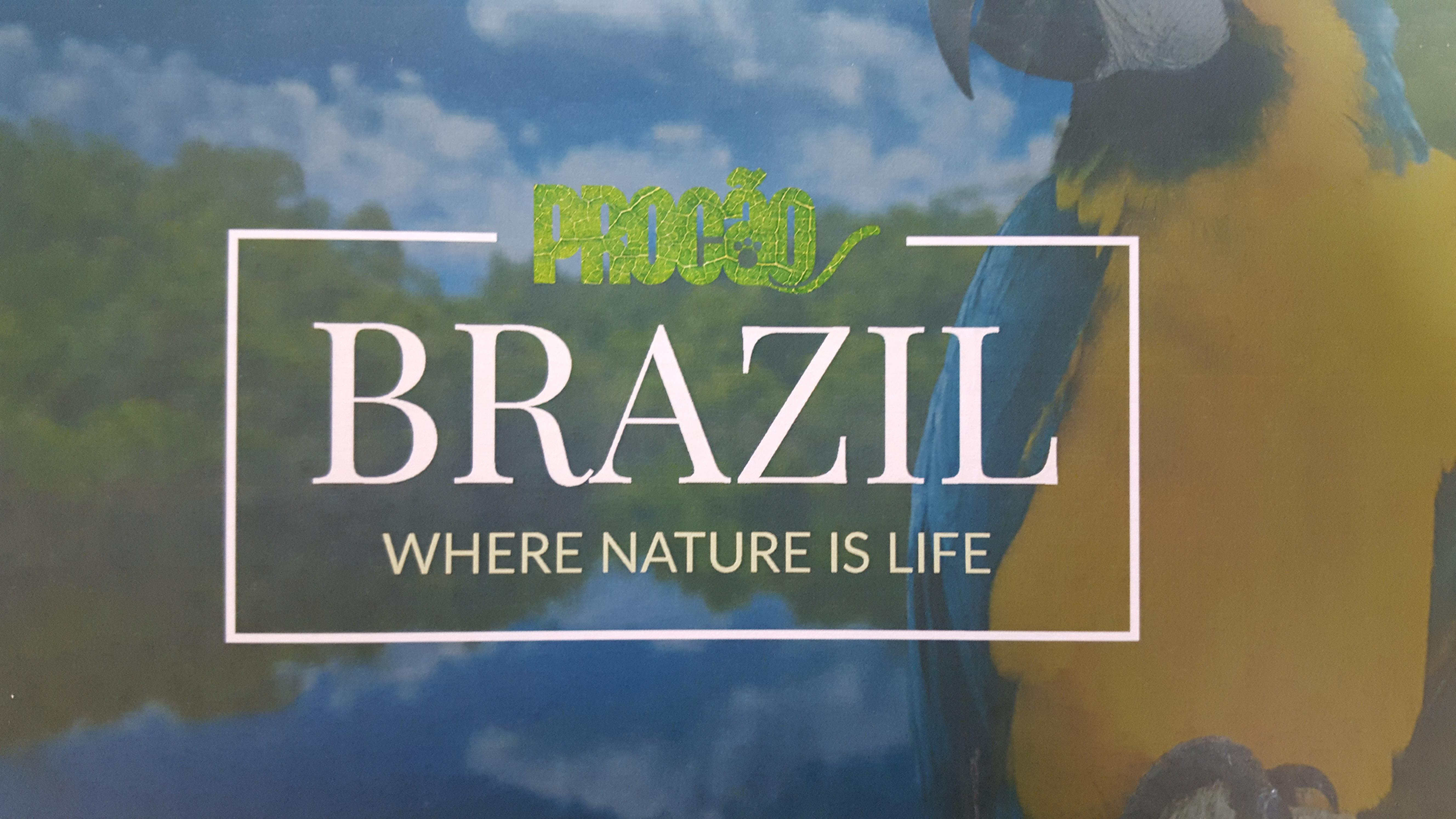 procao-brazil